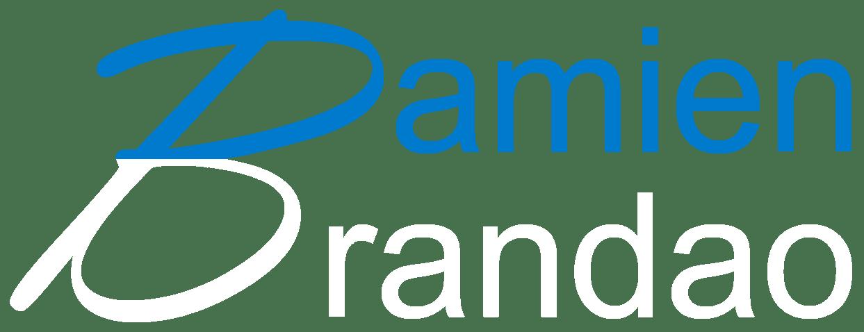 Damien BRANDAO – Portfolio